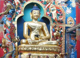 Shakyamuni Buddha Statue in Namdroling's Golden Temple